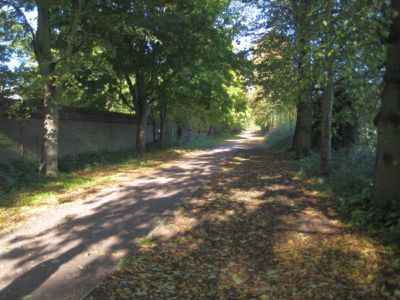 Ham Avenues Oct 2012