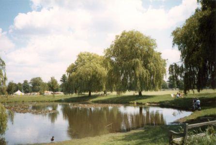 Ham Common - Ham Pond 1985