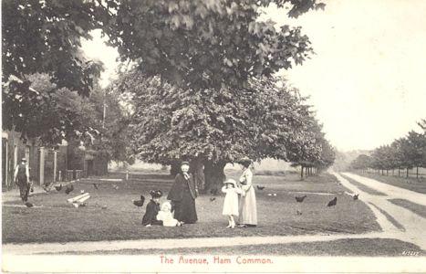 Ham Gate Avenue-1906
