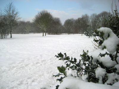 Ham Lands (1) Feb 2009
